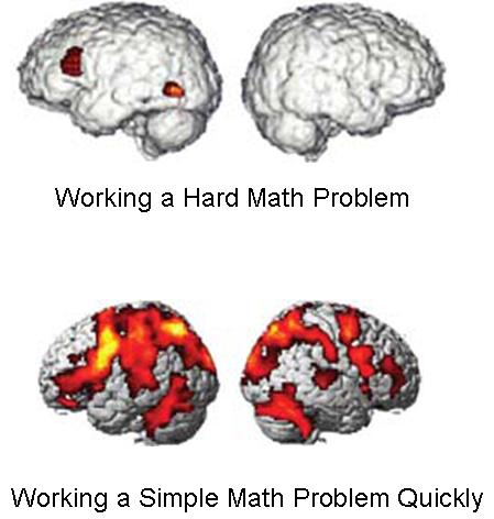 cervello francescotassi.com
